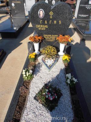 Nadgrobni spomenik #46